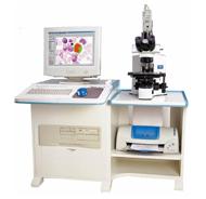 细胞医学图像分析系列